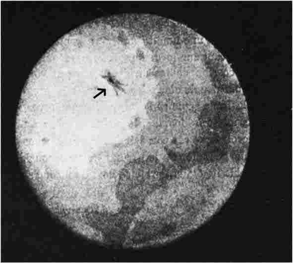 Η περίφημη φωτογραφία του Jose Bonilla. Το βέλος δείχνει ένα από τα μυστηριώδη αντικείμενα που παρατηρήθηκαν από τον Μεξικανό αστρονόμο