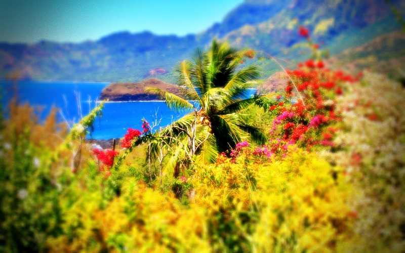 Η παραδείσια Νήσος της Ουτοπίας…
