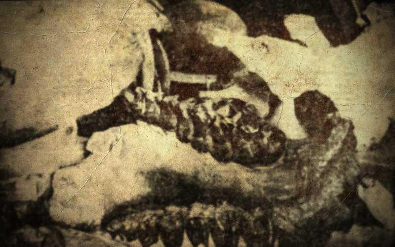 Νεκροταφείο προϊστορικών ζώων στο Πικέρμι (Μέρος Α)...