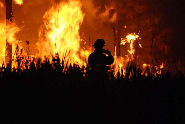 heatwave and deadly wildfires europe, heatwave europe, wildfire europe, wildfire europe risk
