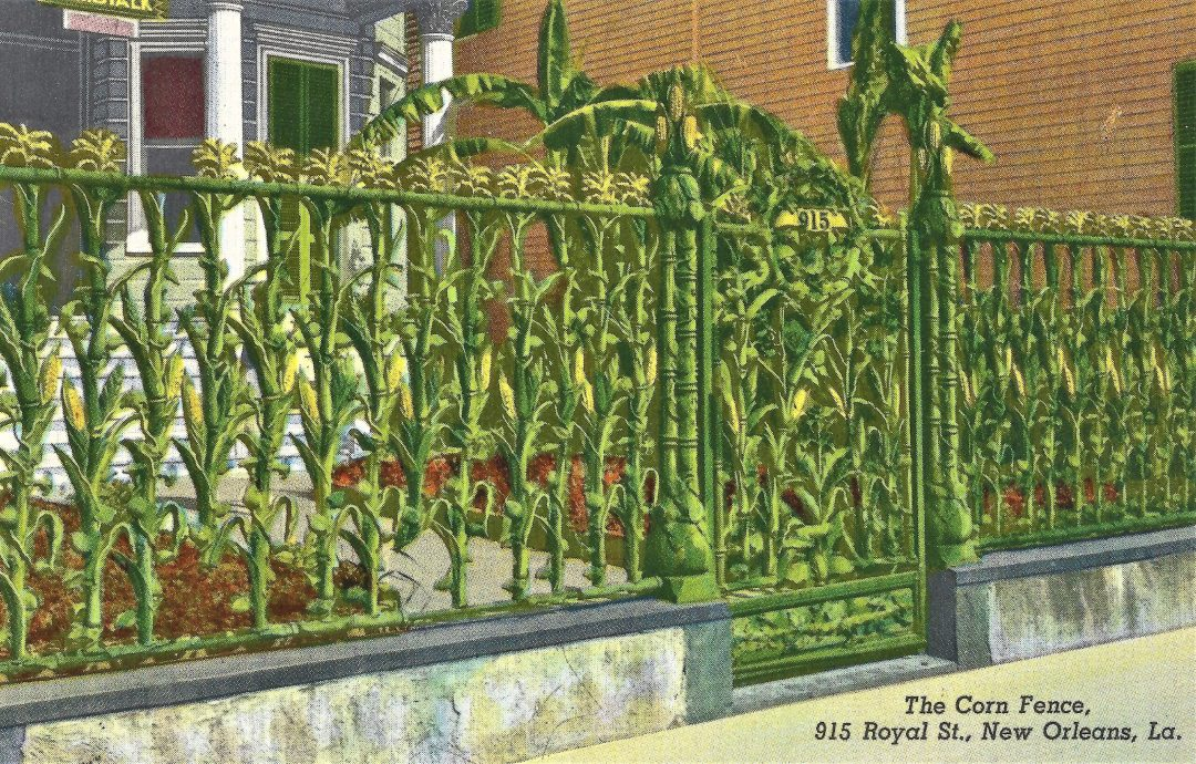 Vintage postcard of the cornstalk fence in the French Quarter of New Orleans