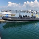 Strangford Lough Boat Trips