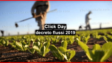 Photo of Click day decreto flussi 2019