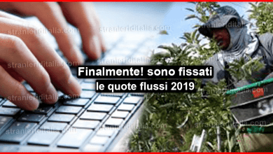 Photo of Finalmente ! sono state fissate le quote flussi 2019