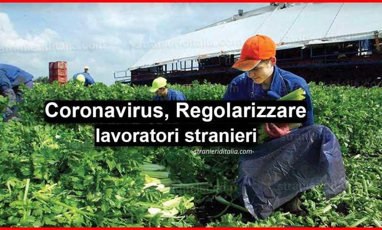 """Photo of Coronavirus, crollo del settore agricolo: """"Regolarizzare lavoratori stranieri"""""""
