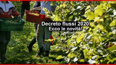 Photo of Decreto flussi 2020: Ecco le novità | Stranieri d'Italia