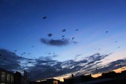 blaue Stunde