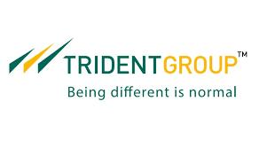 Trident Ltd-A Safe & High Potential Multibagger (CMP64.75)