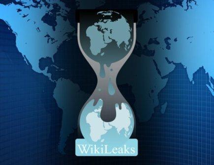 wikileaks-web
