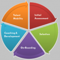 Sales-excellence assessment