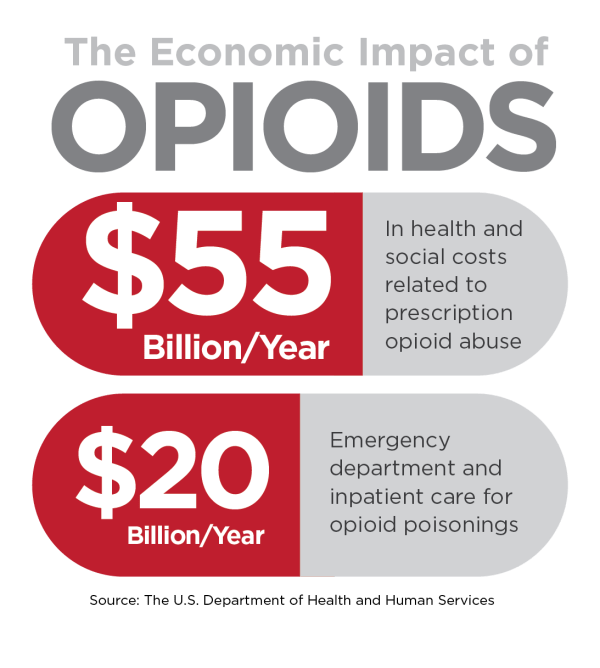 The Opioid Epidemic and Its Cost on Society and the ...
