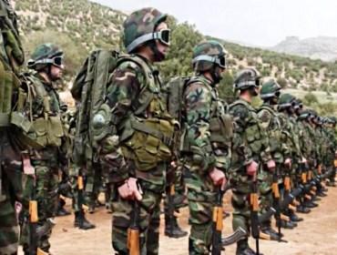 Eléments du Hezbollah Libanais.