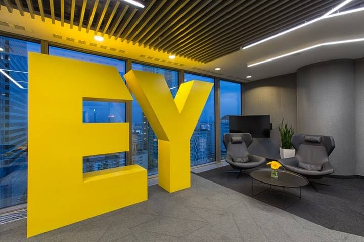 EY consulting experience