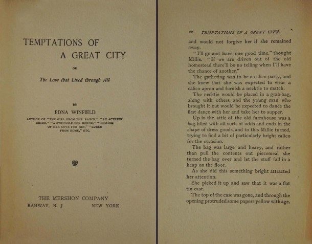 Temptations of a Great City by Edna Winfield