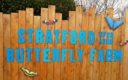 Stratford-upon-Avon Butterfly Farm ©Stratfordblog.com