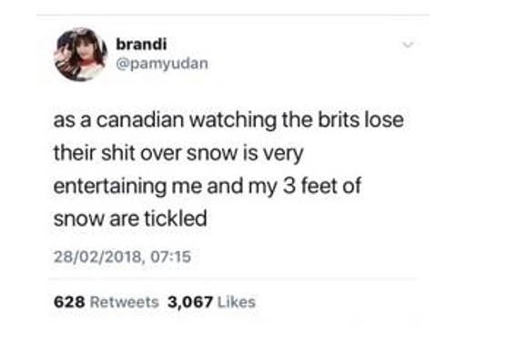 snow tweet