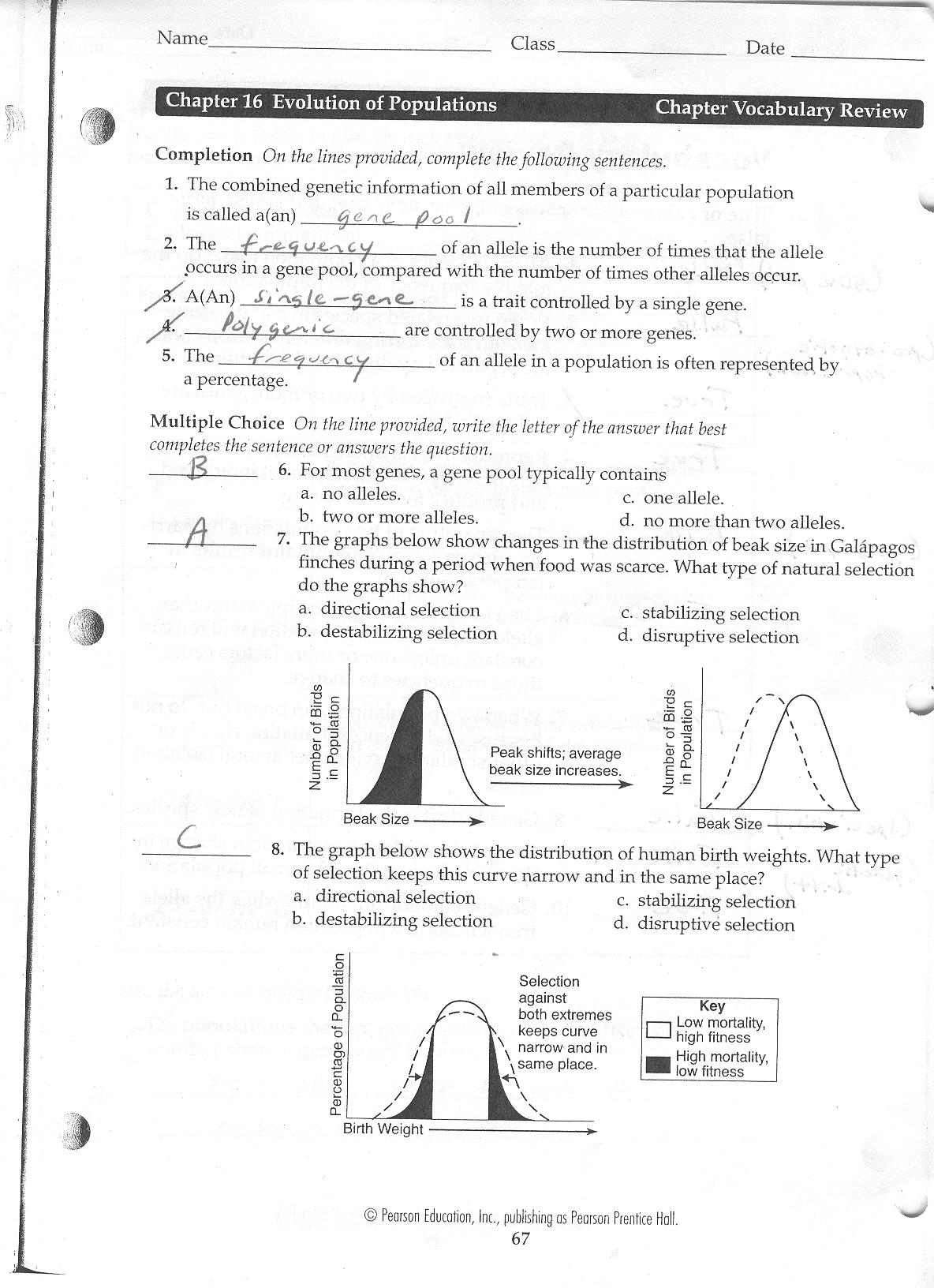 Worksheet Evolution Worksheet Grass Fedjp Worksheet