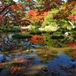 京都の紅葉で左京区の穴場を厳選④!無鄰菴・法然院・安楽寺!