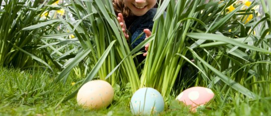 EASTER EGG HUNT STRAWBERRY GARDEN CENTRE UTTOXETER