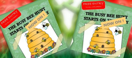BEE HUNT AT STRAWBERRY GARDEN CENTRE UTTOXETER