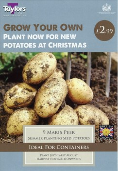 Taylors Bulbs VP602 Autumn Planting Seed Potatoes Maris Peer available from Strawberry Garden Centre, Uttoxeter