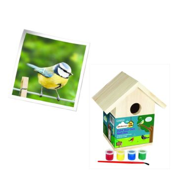 Gardman A01910 paint your own bird nest box available from Strawberry Garden Centre, Uttoxeter
