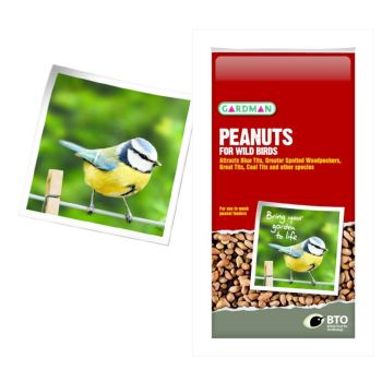 Gardman A05010 Peanuts 1kg available from Strawberry Garden Centre, Uttoxeter