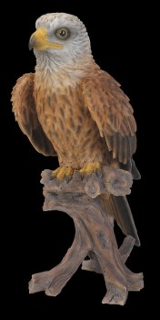 vivid-arts-red-kite-xrl-rkte-b-available-from-strawberry-garden-centre-uttoxeter