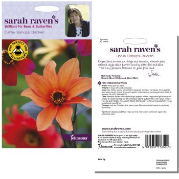 sarah-raven-dahlia-bishops-children-seeds-available-from-strawberry-garden-centre-uttoxeter