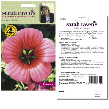 sarah-raven-malope-vulcan-seeds-available-from-strawberry-garden-centre-uttoxeter