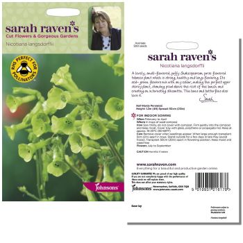 sarah-raven-nicotiana-langsdorffii-seeds-available-from-strawberry-garden-centre-uttoxeter