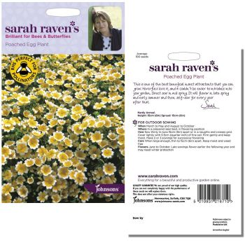sarah-raven-poached-egg-plant-seeds-available-from-strawberry-garden-centre-uttoxeter