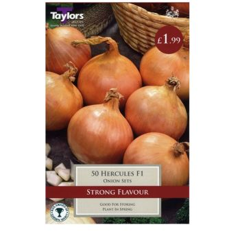 Taylors Bulbs VP215 Hercules F1 Onion Set available from Strawberry Garden Centre, Uttoxeter