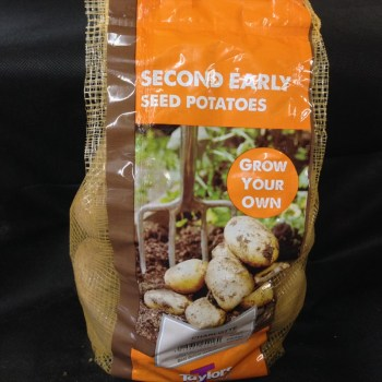 taylors-charlotte-second-early-seed-potatoes-available-from-strawberry-garden-centre-uttoxeter