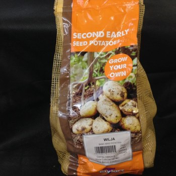 taylors-wilja-second-early-seed-potatoes-available-from-strawberry-garden-centre-uttoxeter