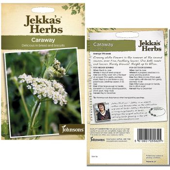 jekkas-herbs-caraway-seeds-available-from-strawberry-garden-centre-uttoxeter