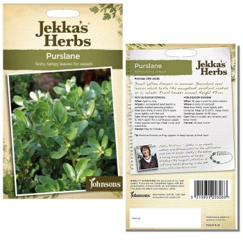 jekkas-herbs-purslane-seeds-available-from-strawberry-garden-centre-uttoxeter