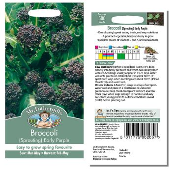 Mr. Fothergill Broccoli (Sprouting) Early Purple Seeds available from Strawberry Garden Centre, Uttoxeter