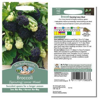 Mr. Fothergill Broccoli (Sprouting) Lancer Mixed Seeds available from Strawberry Garden Centre, Uttoxeter