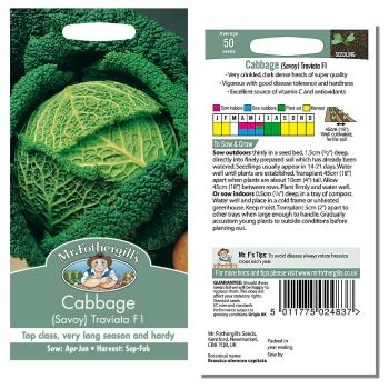 Mr. Fothergill Cabbage (Savoy) Traviata F1 Seeds available from Strawberry Garden Centre, Uttoxeter