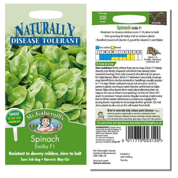 Mr. Fothergill Spinach Emilia F1 Seeds available from Strawberry Garden Centre, Uttoxeter