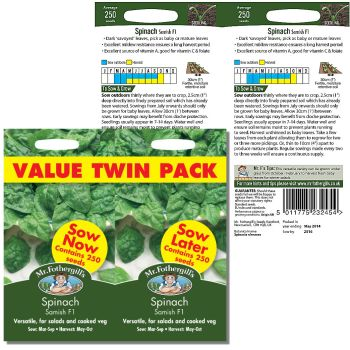 Mr. Fothergill Spinach Samish F1 value twin pack Seeds available from Strawberry Garden Centre, Uttoxeter