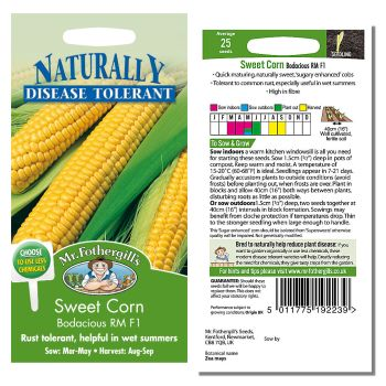 Mr. Fothergill Sweet Corn Bodacious RM F1 Seeds available from Strawberry Garden Centre, Uttoxeter