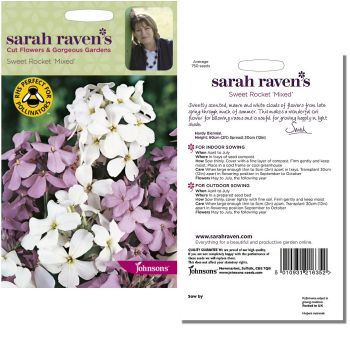 sarah-raven-sweet-rocket-mixed-seeds-available-from-strawberry-garden-centre-uttoxeter