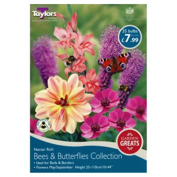 Taylors Bulbs SV303 bee & butterfly collection available from Strawberry Garden Centre, Uttoxeter