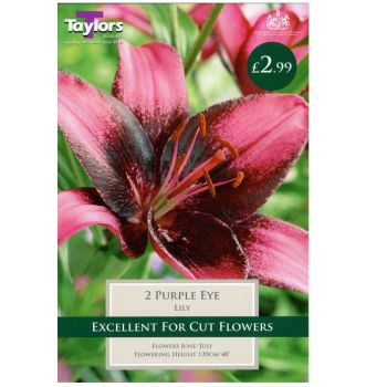 Taylors Bulbs TS531 lily purple eye bulbs available from Strawberry Garden Centre, Uttoxeter