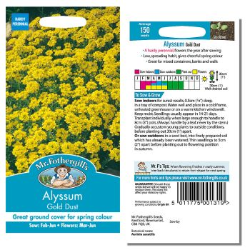 Mr. Fothergill Alyssum Gold Dust Seeds available from Strawberry Garden Centre, Uttoxeter