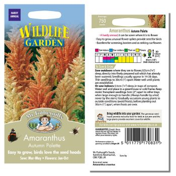Mr. Fothergill Amaranthus Autumn Palette Seeds available from Strawberry Garden Centre, Uttoxeter
