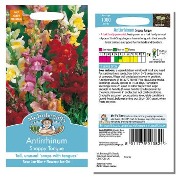 Mr. Fothergill Antirrhinum Snappy Tongue Seeds available from Strawberry Garden Centre, Uttoxeter