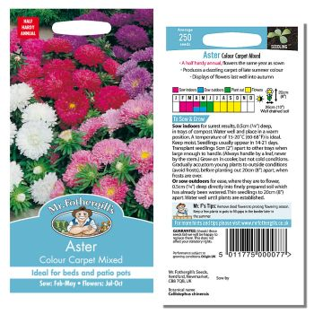 Mr. Fothergill Aster Colour Carpet Mixed Seeds available from Strawberry Garden Centre, Uttoxeter